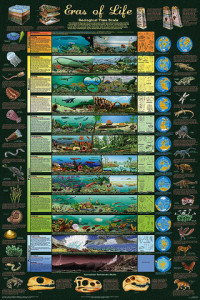 Geological Time Line. Dinosaurs, Dinosaur Expeditions, Dinolands, Prehistoric Life, Life, Walking with Dinosaurs, palaeontology, paleontology, fossils, fossil digs, dinodigs, dinosaur digs, ancient life, Mesozoic, Extinction, dinokids, Dinoman, Archaeology, Archeology,