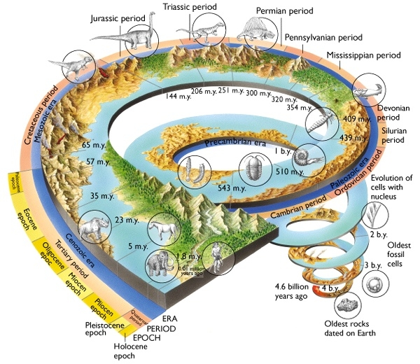 Geological Time Scales  