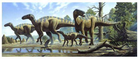 Iguanodon,Gideon Mantell, Dinosaurs, Dinosaur Expeditions, Dinolands, Prehistoric Life, Life, Walking with Dinosaurs, palaeontology, paleontology, fossils, fossil digs, dinodigs, dinosaur digs, ancient life, Mesozoic, Extinction, dinokids, Dinoman, Archaeology, Archeology,Geological Time Line, fossilised bones, skeletons, prehistoric, fossil bones, bones, old bones, ancient bones, Dinosaur Emporium, Dinosaurs for sale, Dinosaur Shop, Dinosaur Store