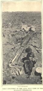 Dinosaurs, Dinosaur Expeditions, Dinolands, Prehistoric Life, Life, Walking with Dinosaurs, palaeontology, paleontology, fossils, fossil digs, dinodigs, dinosaur digs, ancient life, Mesozoic, Extinction, dinokids, Dinoman, Archaeology, Archeology,Geological Time Line, fossilised bones, skeletons, prehistoric, Cope and Marsh, the Bone Wars