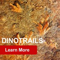 GeoZone, DinoZone, Gerald Allan Davie, Dinoman, dinosaurs, pterosaurs, ichthyosaurs, plesiosaurs, Mesozoic, Walking with Dinosaurs, Triassic, Jurassic, Cretaceous, Extinction, Trilobites, Cambrian Extinction, Cambrian, Permian, Dicynodonts, Trilobites, Cretaceous Tertiary, Cretaceous Paleogene, Jurassic Park, Jurassic World, Museums, Paleontology, Palaeontology, bones, archaeology, Dinotrails