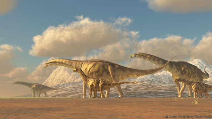 GeoZone, DinoZone, Gerald Allan Davie, Dinoman, dinosaurs, pterosaurs, ichthyosaurs, plesiosaurs, Mesozoic, Walking with Dinosaurs, Triassic, Jurassic, Cretaceous, Extinction, Trilobites, Cambrian Extinction, Cambrian, Permian, Dicynodonts, Trilobites, Cretaceous Tertiary, Cretaceous Paleogene, Jurassic Park, Jurassic World, Museums, Paleontology, Palaeontology, bones, archaeology, argentinosaurus, longest ever dinosaur